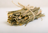 Willow bark medical — Stock Photo