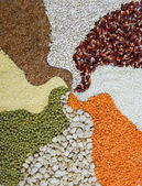 Different colorful cereals, pattern of cereals — Stock Photo