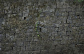 Old brick wall: Texture of vintage brickwork - stone brick — Stock Photo