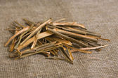 Willow bark medical — Stock Photo