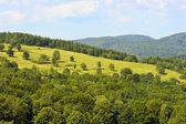 Polish landscape. — Stock Photo