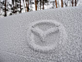Ice Covered Car — Stock Photo