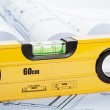 Spirit level and architecture blueprints — Stock Photo #24419799