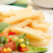 French fries and salad - Stock Photo