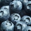 Blueberries — Stock Photo #26473051