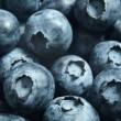 Blueberries — Stock Photo #26473789
