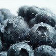 Blueberries — Stock Photo #26474209