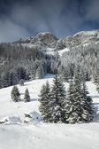 Verschneite ansicht im tatra-gebirge — Stockfoto