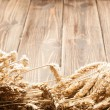 Ears of wheat — Stockfoto