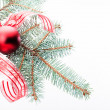 Red christmas decoration — Stock fotografie #31360229