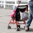 Stock Photo: Mother with her child in stroller walking