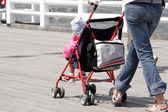 Mother with her child in stroller walking — Stock Photo