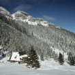 Snowy view in Tatra Mountains — Stock Photo #31808845
