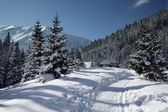Snowy view in Tatra Mountains — Foto Stock