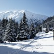 Snowy view in Tatra Mountains — Stock fotografie