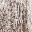 Wood Background Texture — Stock Photo
