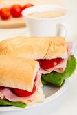 Sándwich de panini italiano — Foto de Stock