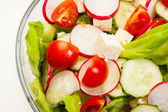 Fresh vegetable salad with cucumber and radish — Stock Photo