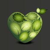 Heart of green leaves — Stock Vector