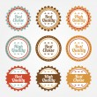 Stock Vector: Collection of Premium and High Quality labels