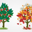 Seasons trees. — Stock Vector