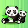 Stock Vector: Two cute pandas.