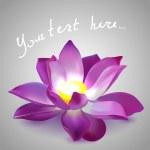 Pink lotus. — Stock Vector