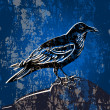 Vector grunge background with crow. — Imagen vectorial