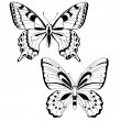 Stock Vector: Vector butterflies in black and white