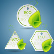 Set of eco labels. — Stock Vector