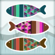 Ornamental aquarium fishes — Stock Vector