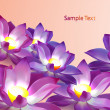 Stock Vector: Vector floral background with violet lotuses