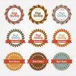 Set of vector stickers, badges, labels — Stock Vector