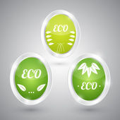 Set of green round signs. Eco, green and natural — Stock Vector