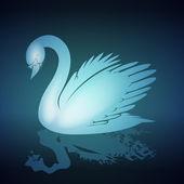 Krásná labuť ilustrace — Stock vektor