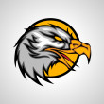Eagle head — Stock Vector