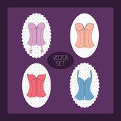 Lady's corset set — Stock Vector