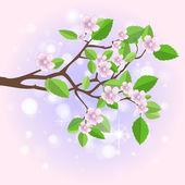 Spring branch. Vector — Stock Vector