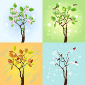 Four Seasons Tree. Vector — Stock Vector