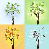 Four Seasons Tree. Vector — Stock Vector