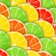 Citrus segments seamless background — Stock Vector