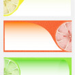 Citrus background — Stock Vector #22965204