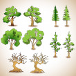 Vector set of green trees. — Stock Vector