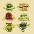 Vintage Labels set of trendy designs — Stock Vector