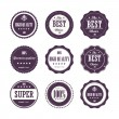 Collection of High Quality labels - Stock Vector
