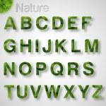 fonte de folhas verdes — Vetorial Stock