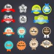 Stock Vector: Set of retro vintage badges and labels