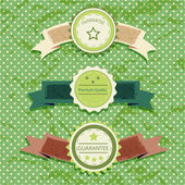 Vintage labels on a green background — Stock Vector