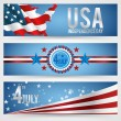 Independence Day- 4 of July — Stock Vector #25662929