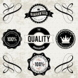 Collection of High Quality labels — Stock Vector #25662931